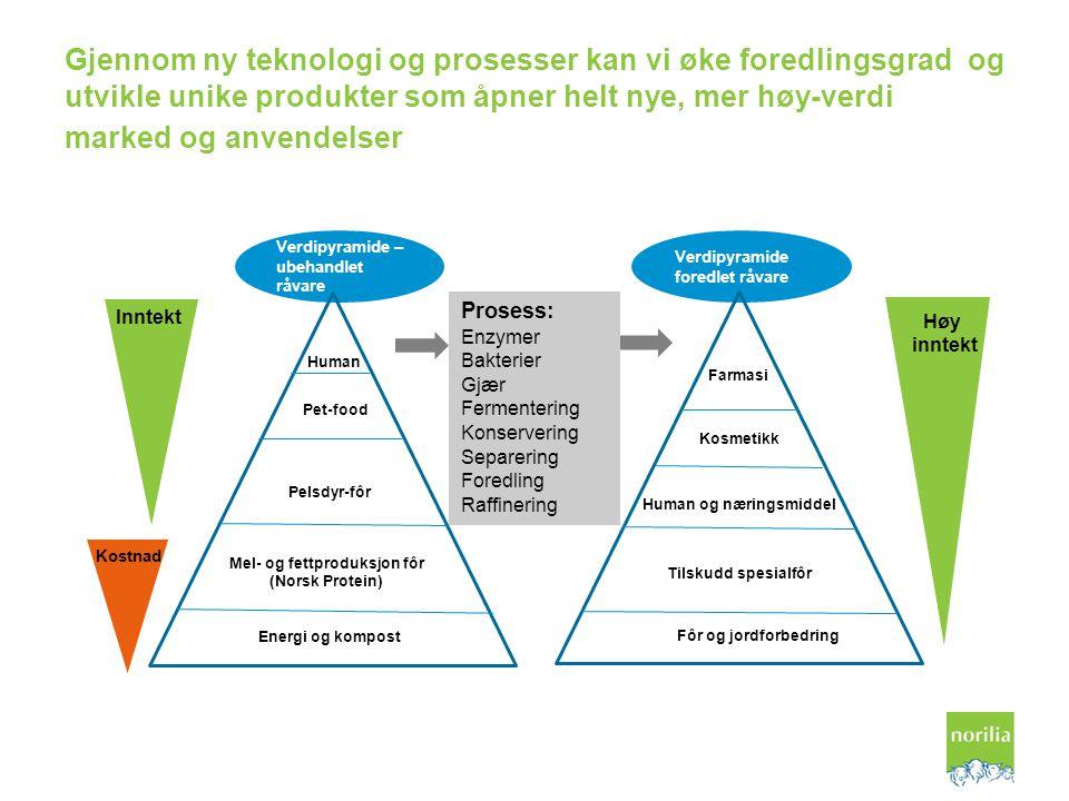 Verdipyramide – ubehandlet råvare Verdipyramide foredlet råvare Gjennom ny teknologi og prosesser kan vi øke foredlingsgrad og utvikle unike produkter