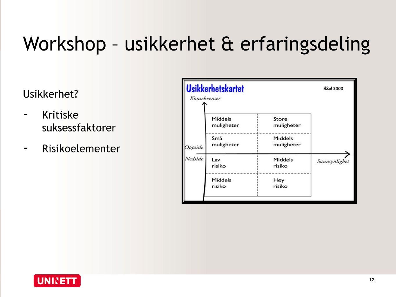 Workshop – usikkerhet & erfaringsdeling Usikkerhet? - Kritiske suksessfaktorer - Risikoelementer 12