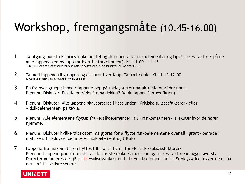Workshop, fremgangsmåte (10.45-16.00) 1. Ta utgangspunkt i Erfaringsdokumentet og skriv ned alle risikoelementer og tips/suksessfaktorer på de gule la