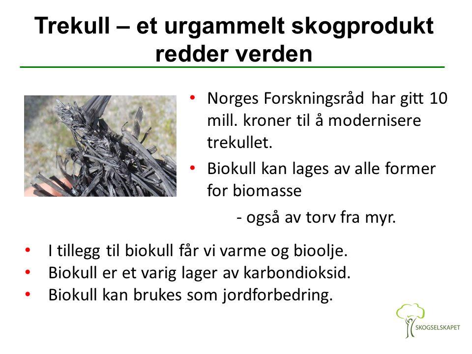 Trekull – et urgammelt skogprodukt redder verden Norges Forskningsråd har gitt 10 mill. kroner til å modernisere trekullet. Biokull kan lages av alle