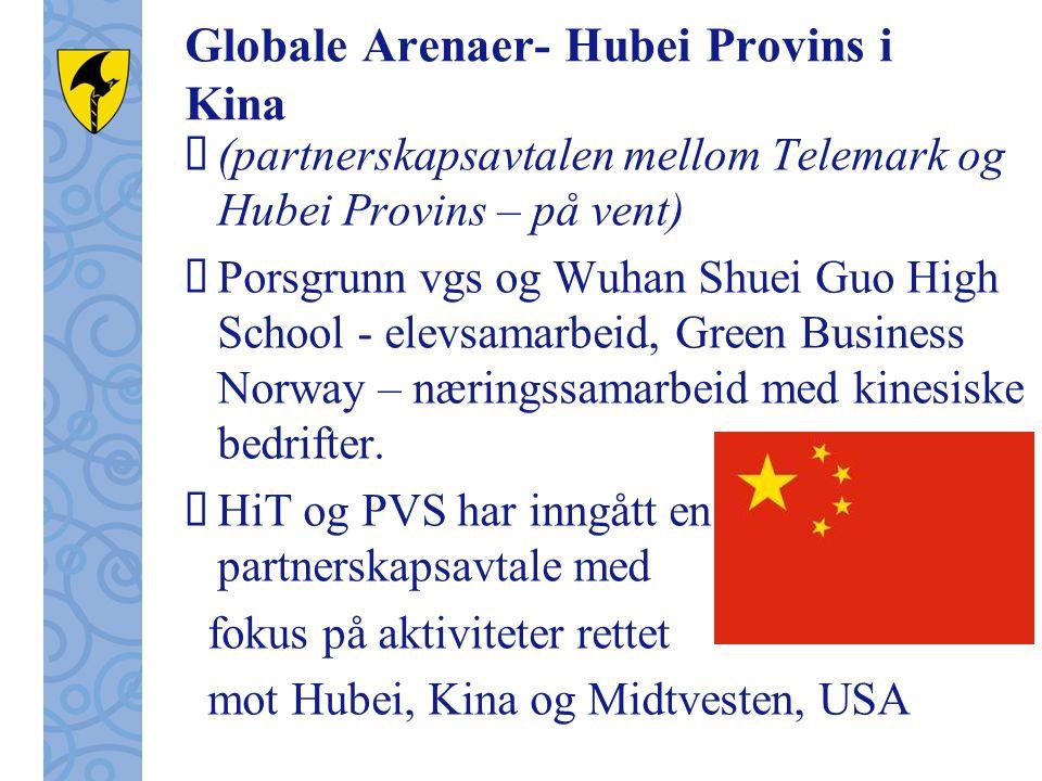 Globale Arenaer- Hubei Provins i Kina  (partnerskapsavtalen mellom Telemark og Hubei Provins – på vent)  Porsgrunn vgs og Wuhan Shuei Guo High School - elevsamarbeid, Green Business Norway – næringssamarbeid med kinesiske bedrifter.