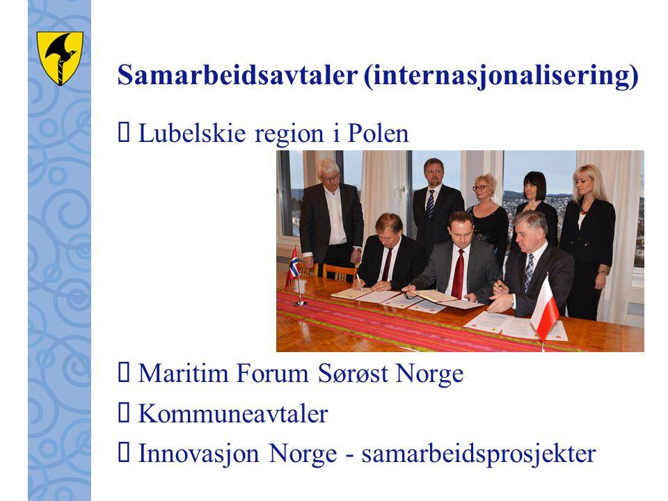 Samarbeidsavtaler (internasjonalisering)  Lubelskie region i Polen  Maritim Forum Sørøst Norge  Kommuneavtaler  Innovasjon Norge - samarbeidsprosjekter