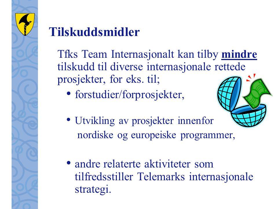 Tilskuddsmidler Tfks Team Internasjonalt kan tilby mindre tilskudd til diverse internasjonale rettede prosjekter, for eks.