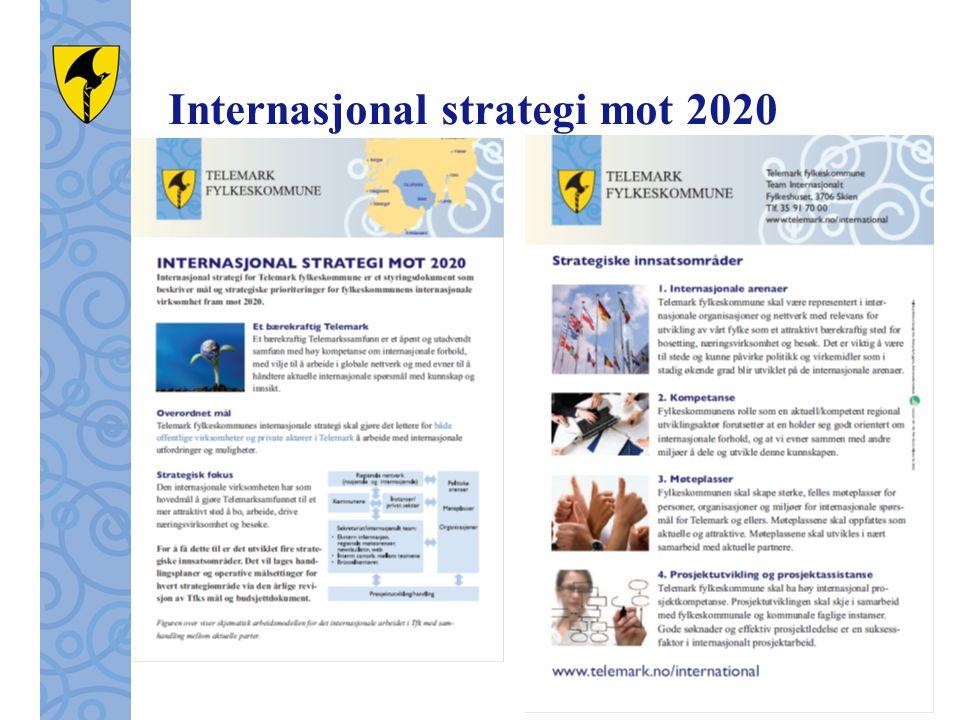 Internasjonal strategi mot 2020
