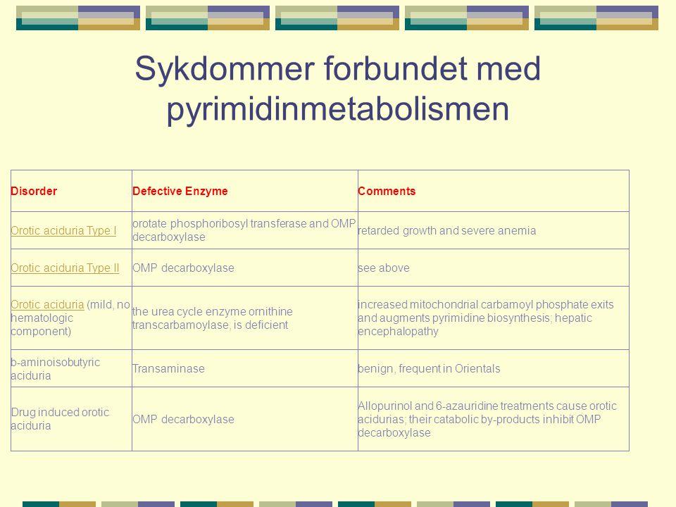 Sykdommer forbundet med pyrimidinmetabolismen DisorderDefective EnzymeComments Orotic aciduria Type I orotate phosphoribosyl transferase and OMP decar