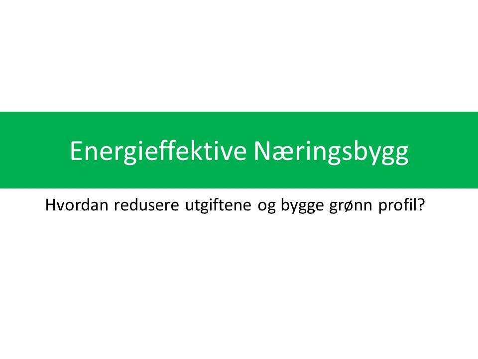 Energieffektive Næringsbygg Hvordan redusere utgiftene og bygge grønn profil?