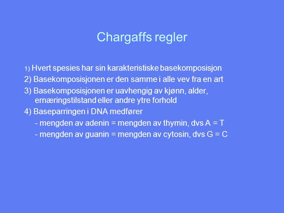 Chargaffs regler 1) Hvert spesies har sin karakteristiske basekomposisjon 2) Basekomposisjonen er den samme i alle vev fra en art 3) Basekomposisjonen