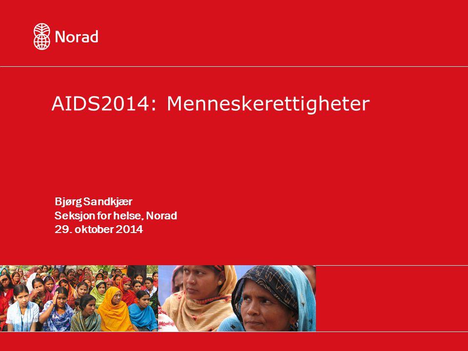 AIDS2014: Menneskerettigheter Bjørg Sandkjær Seksjon for helse, Norad 29. oktober 2014