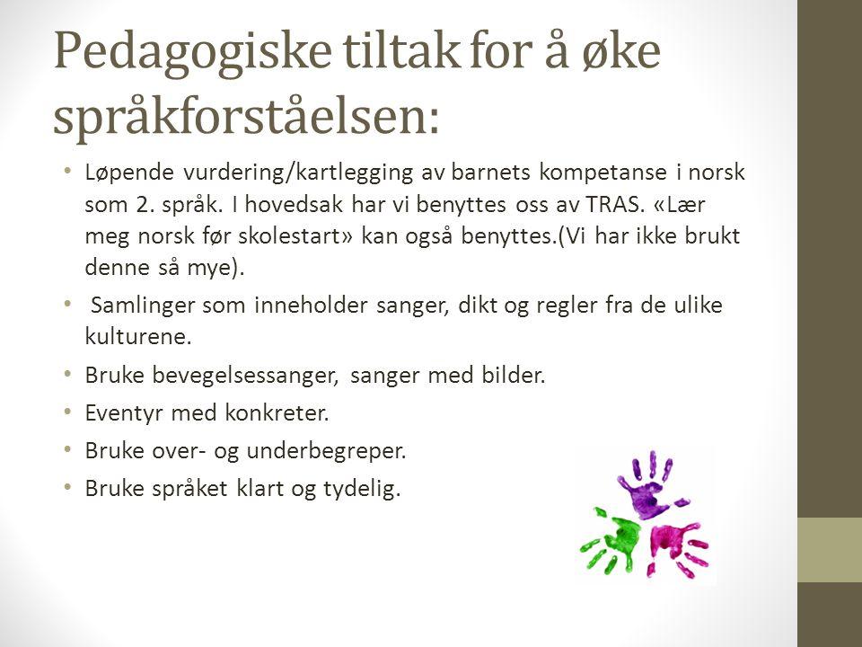 Pedagogiske tiltak for å øke språkforståelsen: Løpende vurdering/kartlegging av barnets kompetanse i norsk som 2. språk. I hovedsak har vi benyttes os