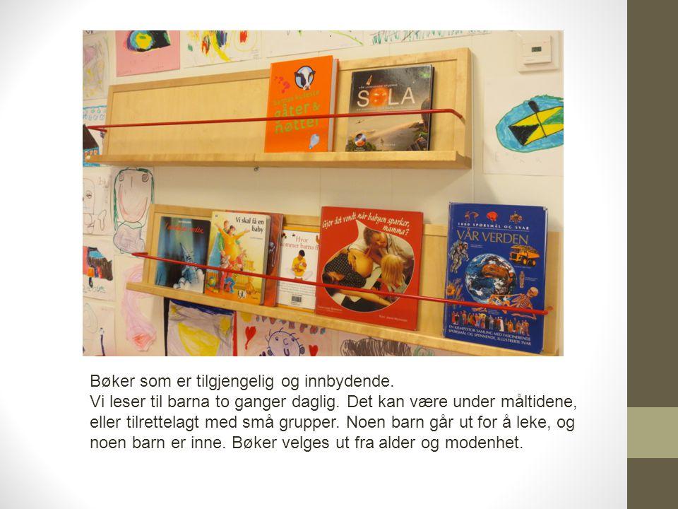 Bøker som er tilgjengelig og innbydende. Vi leser til barna to ganger daglig. Det kan være under måltidene, eller tilrettelagt med små grupper. Noen b