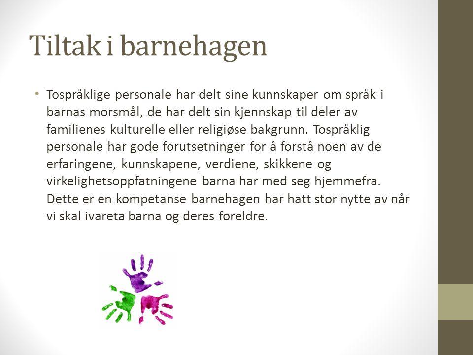 Tiltak i barnehagen Tospråklige personale har delt sine kunnskaper om språk i barnas morsmål, de har delt sin kjennskap til deler av familienes kultur