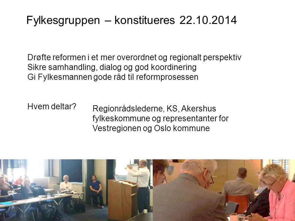 Fylkesgruppen – konstitueres 22.10.2014 Anne-Marie Vikla, prosjektdirektør kommunereformen Drøfte reformen i et mer overordnet og regionalt perspektiv
