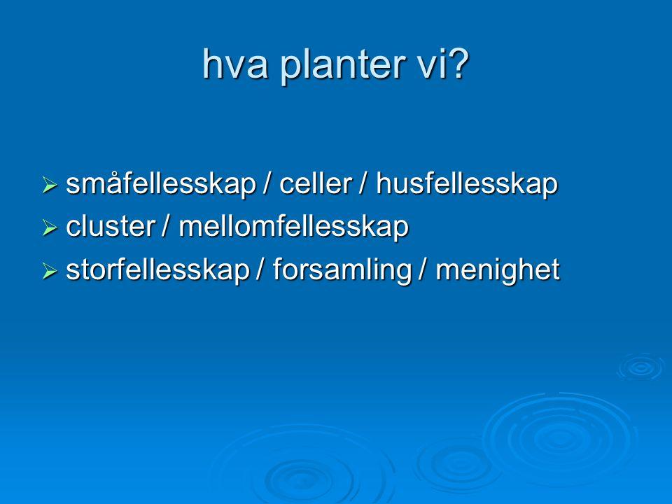 hva planter vi.