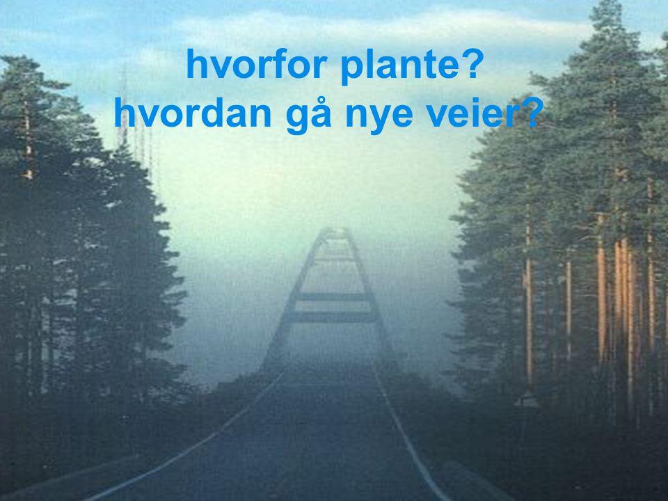 hvorfor plante? hvordan gå nye veier?