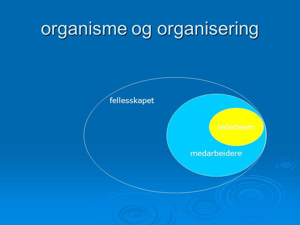 organisme og organisering medarbeidere lederteam fellesskapet