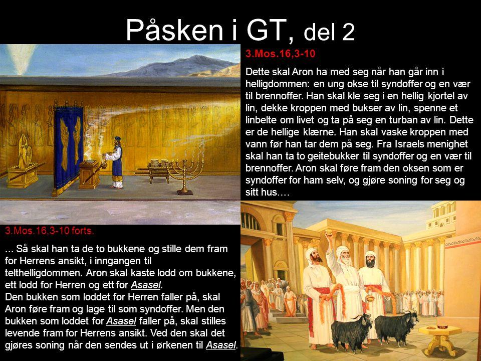 Påsken i GT, del 2 3.Mos.16,3-10 Dette skal Aron ha med seg når han går inn i helligdommen: en ung okse til syndoffer og en vær til brennoffer. Han sk
