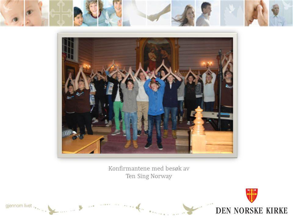 Årsmelding for Kirkestallkomiteen Erik Lo (leder), Vigdis Ekeberg, Grethe Bergersen, Børre Børresen og Jan Olav Tveten.