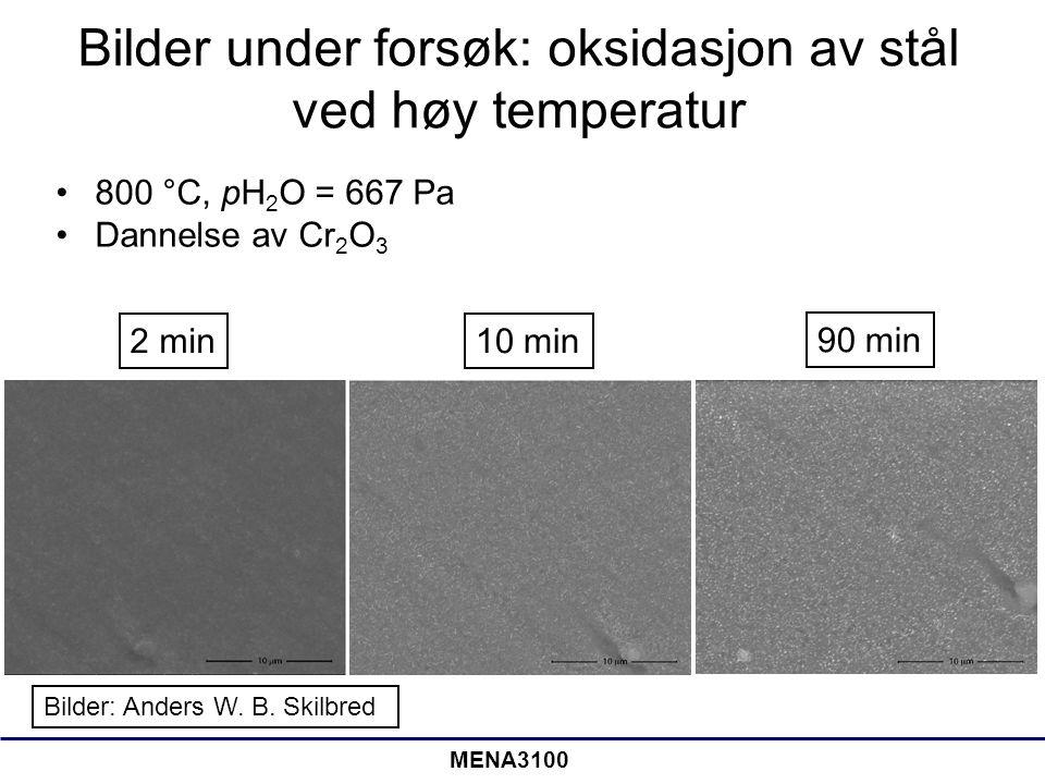 MENA3100 Bilder under forsøk: oksidasjon av stål ved høy temperatur 800 °C, pH 2 O = 667 Pa Dannelse av Cr 2 O 3 Bilder: Anders W. B. Skilbred 2 min10