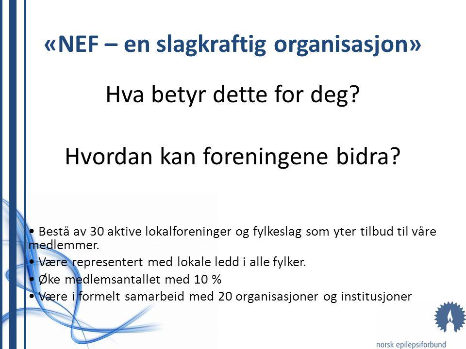 «NEF – en slagkraftig organisasjon» Hva betyr dette for deg? Hvordan kan foreningene bidra? Bestå av 30 aktive lokalforeninger og fylkeslag som yter t