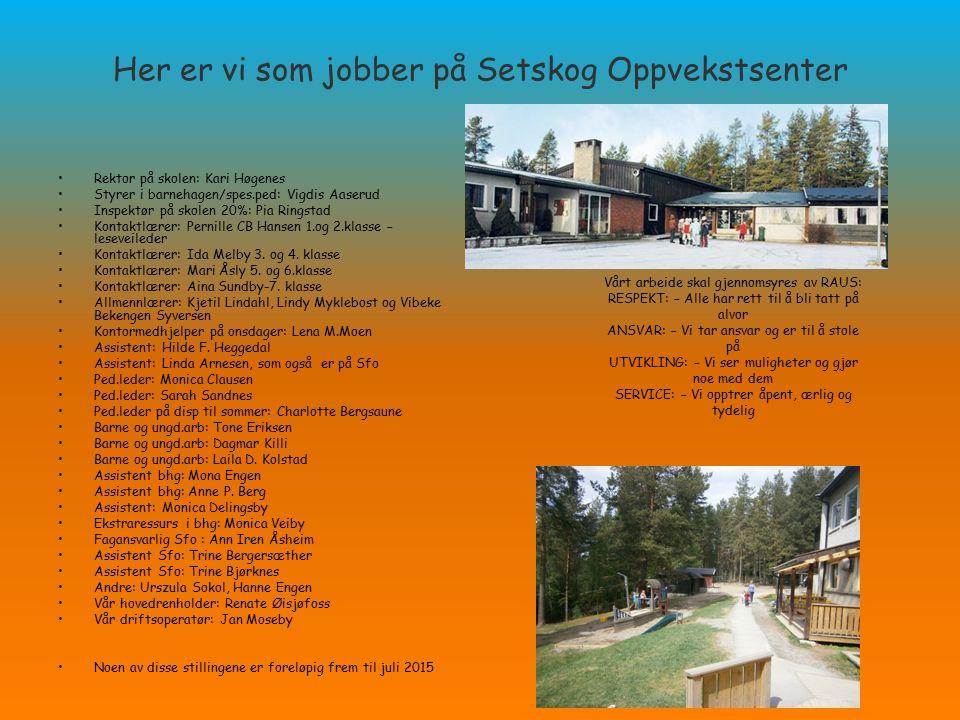 SETSKOG OPPVEKSTSENTER Barnehage, skole og SFO Setskog Oppvekstsenter består av barnehage, skole og SFO.