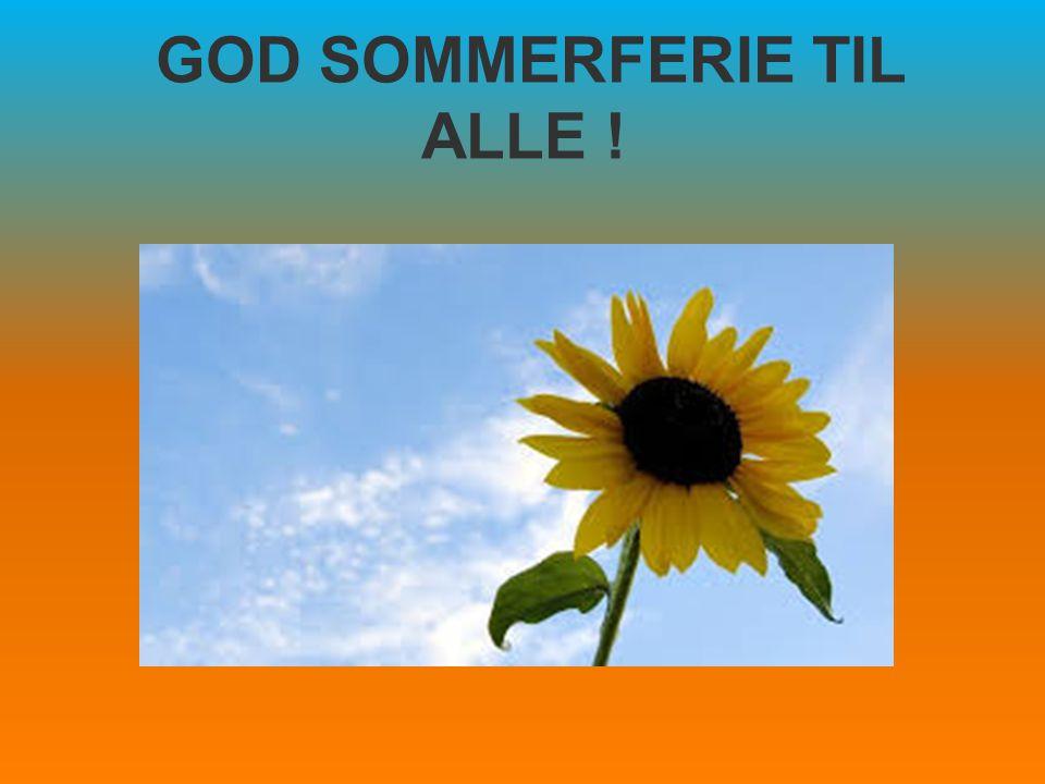 GOD SOMMERFERIE TIL ALLE !