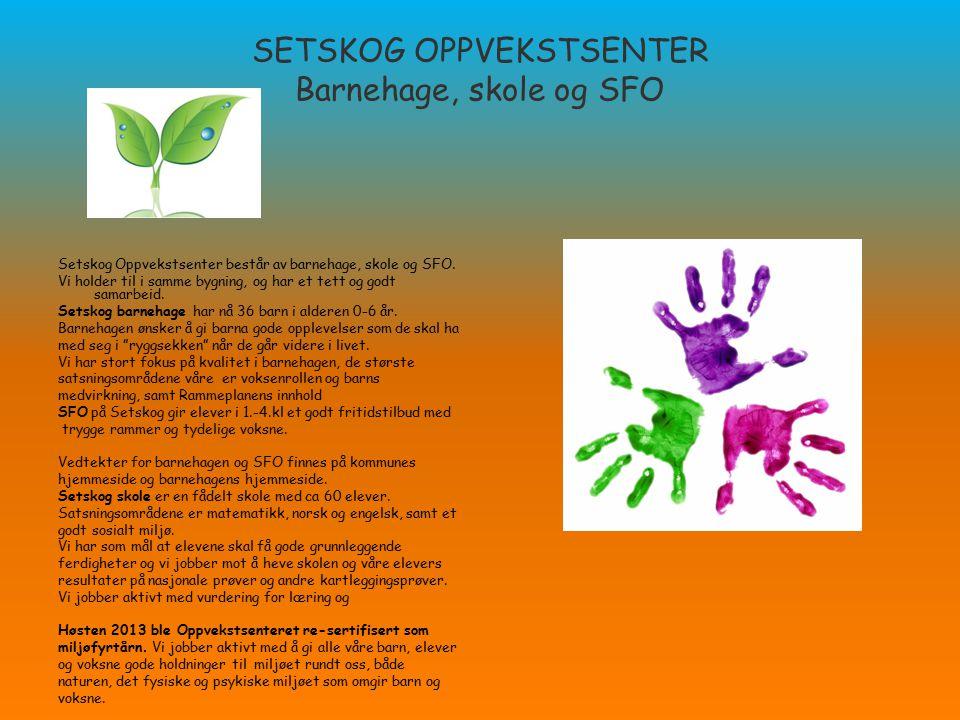 SETSKOG OPPVEKSTSENTER Barnehage, skole og SFO Setskog Oppvekstsenter består av barnehage, skole og SFO. Vi holder til i samme bygning, og har et tett