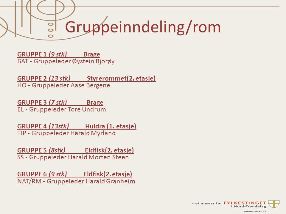 Gruppeinndeling/rom GRUPPE 1 (9 stk) Brage BAT - Gruppeleder Øystein Bjorøy GRUPPE 2 (13 stk) Styrerommet(2.