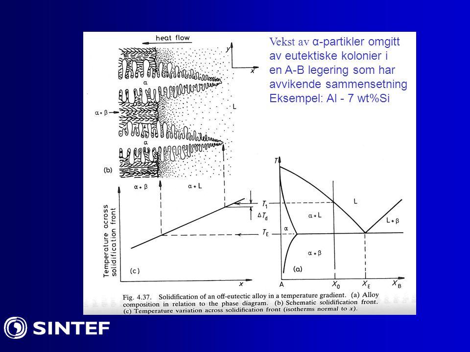 Vekst av α-partikler omgitt av eutektiske kolonier i en A-B legering som har avvikende sammensetning Eksempel: Al - 7 wt%Si