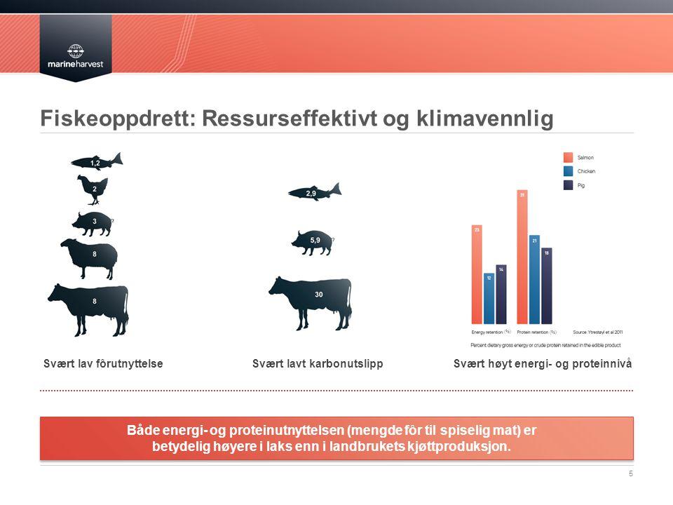 Fiskeoppdrett: Ressurseffektivt og klimavennlig (%) 5 Svært lavt karbonutslippSvært lav fôrutnyttelseSvært høyt energi- og proteinnivå Både energi- og