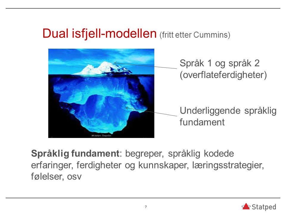 7 Dual isfjell-modellen (fritt etter Cummins) Språk 1 og språk 2 (overflateferdigheter) Underliggende språklig fundament Språklig fundament: begreper,