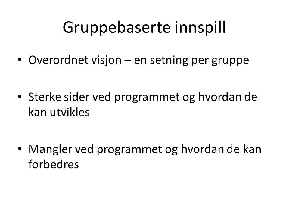 Gruppebaserte innspill Overordnet visjon – en setning per gruppe Sterke sider ved programmet og hvordan de kan utvikles Mangler ved programmet og hvordan de kan forbedres