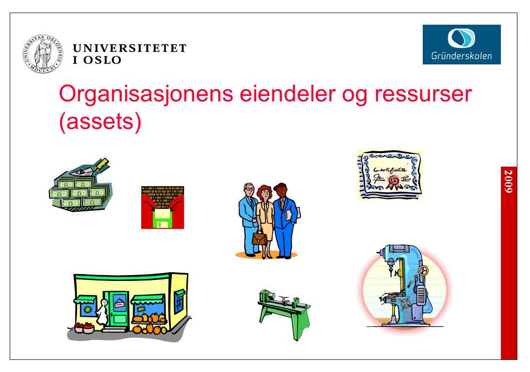 2009 Organisasjonens eiendeler og ressurser (assets)