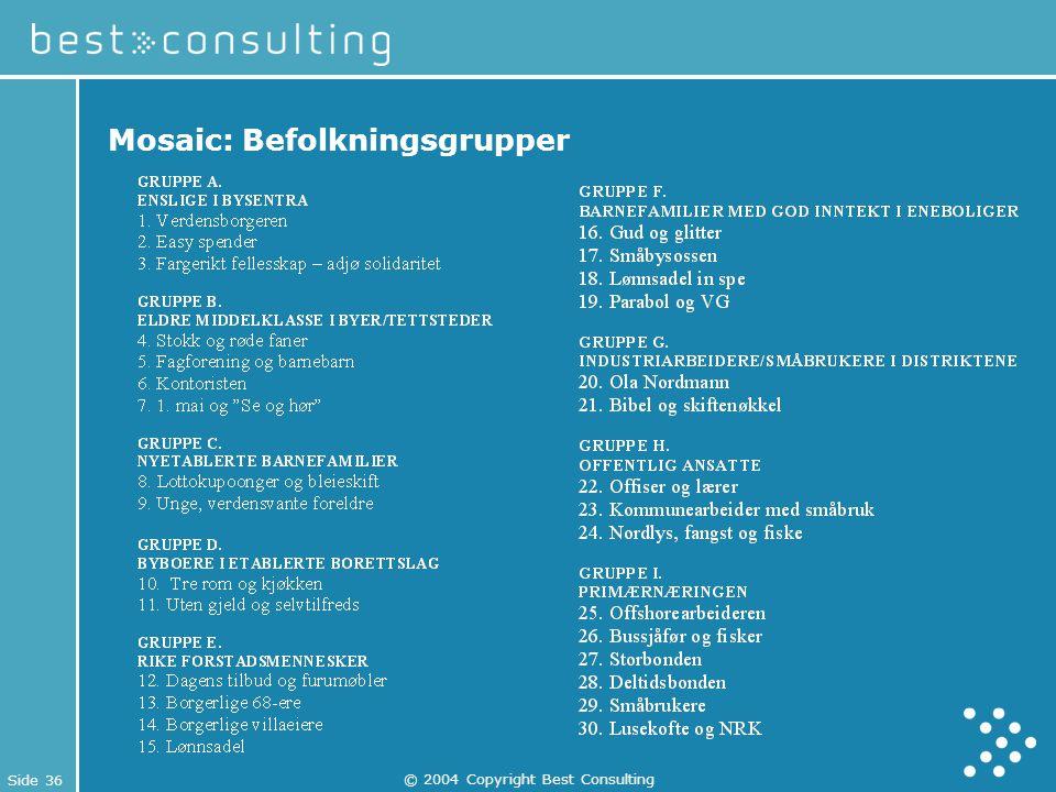 Side 36 © 2004 Copyright Best Consulting Mosaic: Befolkningsgrupper