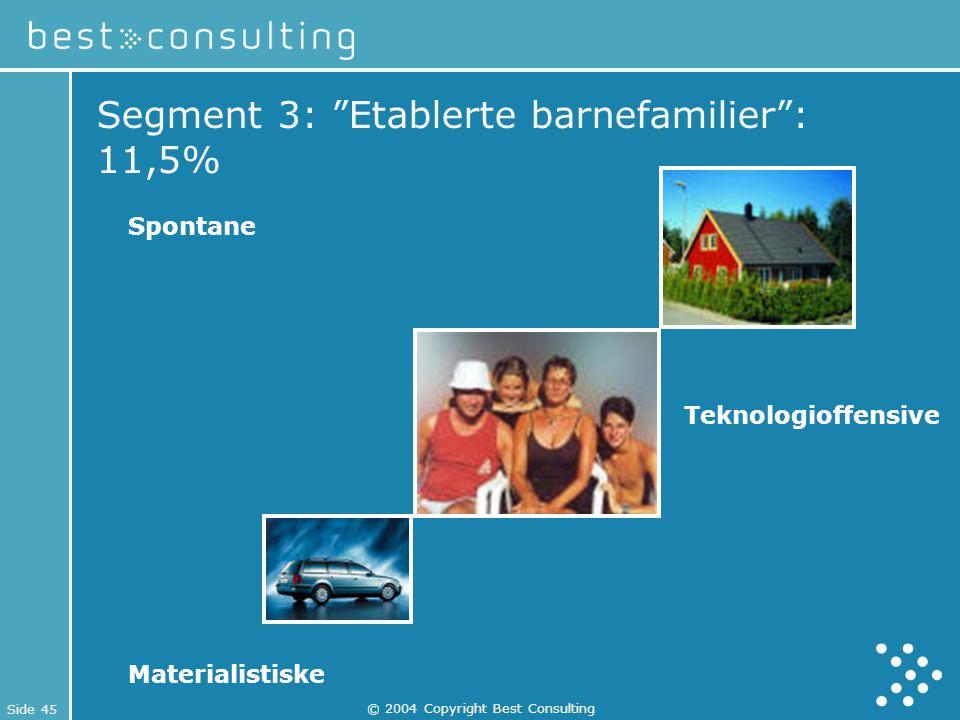 """Side 45 © 2004 Copyright Best Consulting Segment 3: """"Etablerte barnefamilier"""": 11,5% Spontane Teknologioffensive Materialistiske"""