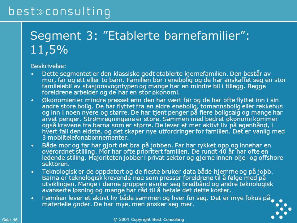 """Side 46 © 2004 Copyright Best Consulting Segment 3: """"Etablerte barnefamilier"""": 11,5% Beskrivelse: Dette segmentet er den klassiske godt etablerte kjer"""
