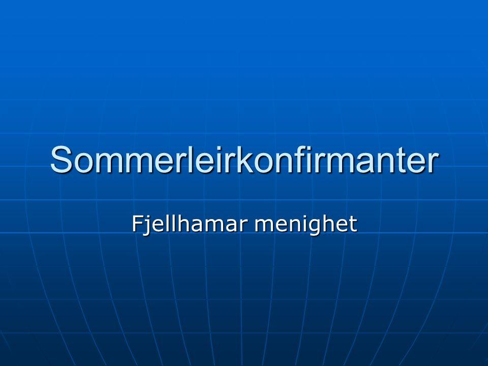 Sommerleirkonfirmanter Fjellhamar menighet