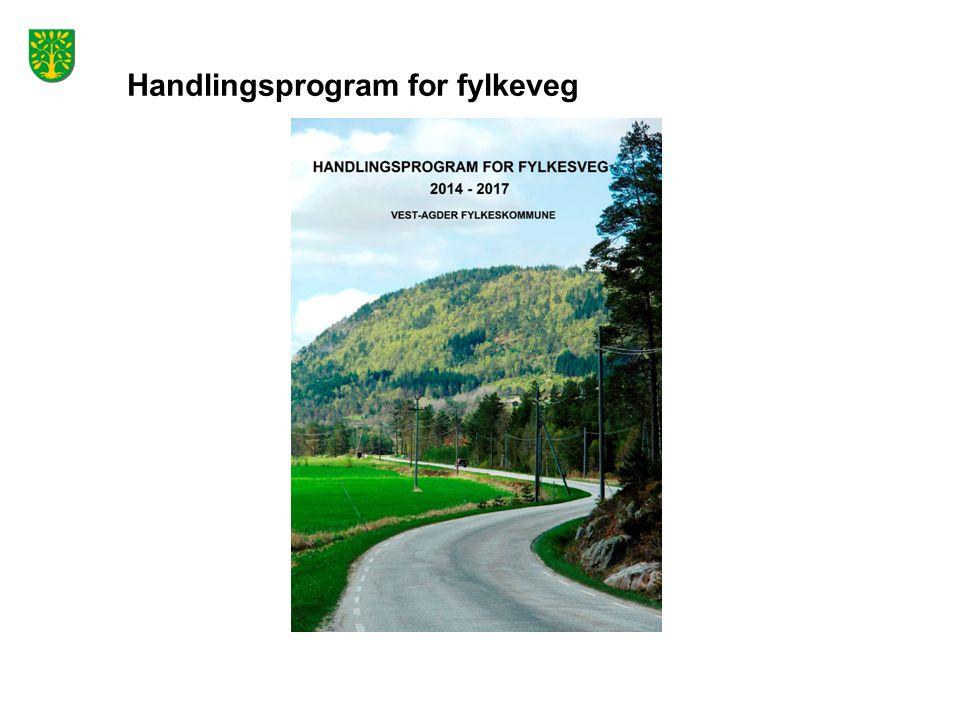 Handlingsprogram for fylkeveg