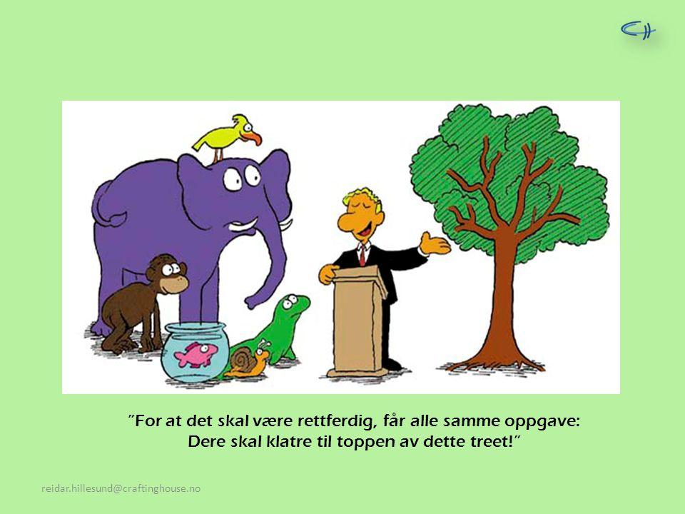 """""""For at det skal være rettferdig, får alle samme oppgave: Dere skal klatre til toppen av dette treet!"""""""