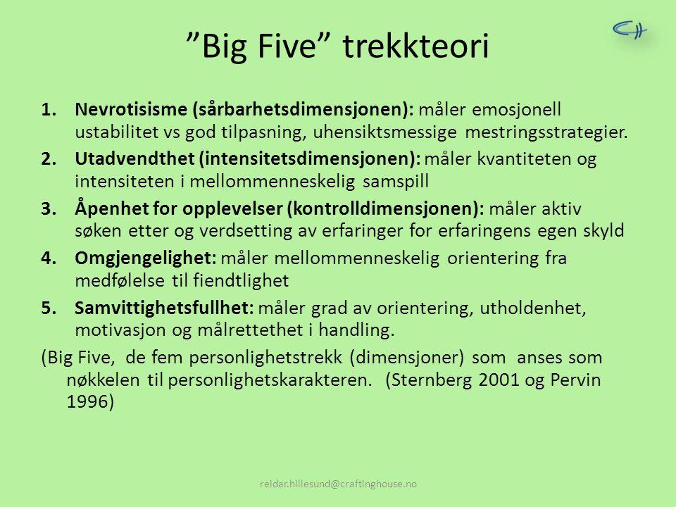"""""""Big Five"""" trekkteori 1.Nevrotisisme (sårbarhetsdimensjonen): måler emosjonell ustabilitet vs god tilpasning, uhensiktsmessige mestringsstrategier. 2."""