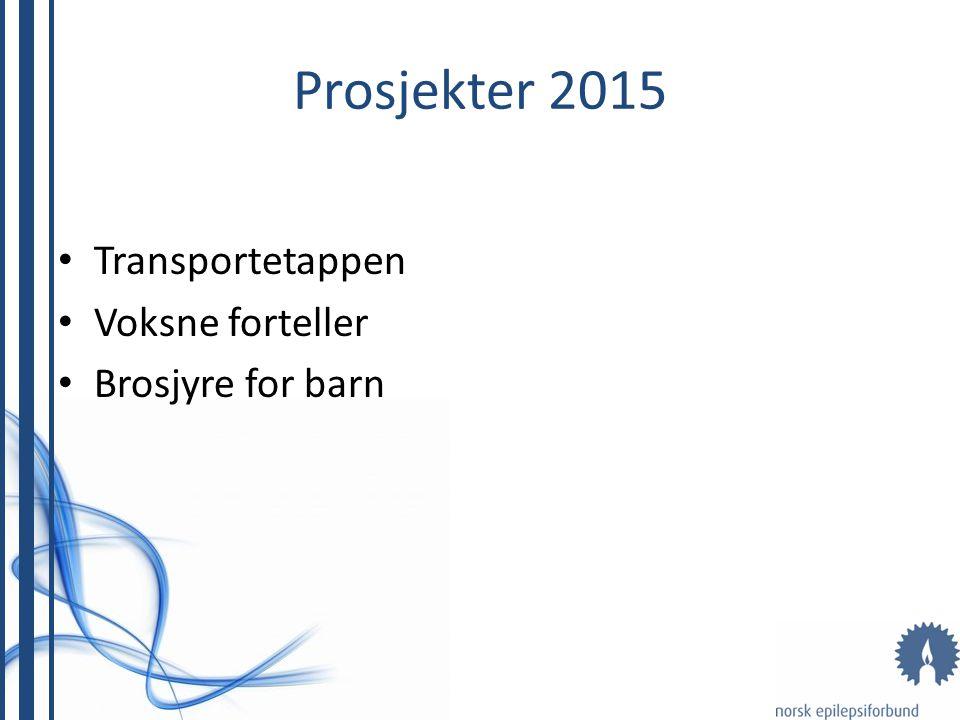 Prosjekter 2015 Transportetappen Voksne forteller Brosjyre for barn