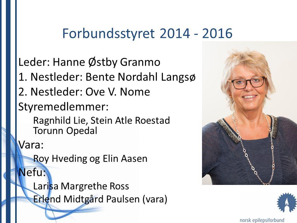 Leder: Hanne Østby Granmo 1. Nestleder: Bente Nordahl Langsø 2. Nestleder: Ove V. Nome Styremedlemmer: Ragnhild Lie, Stein Atle Roestad Torunn Opedal