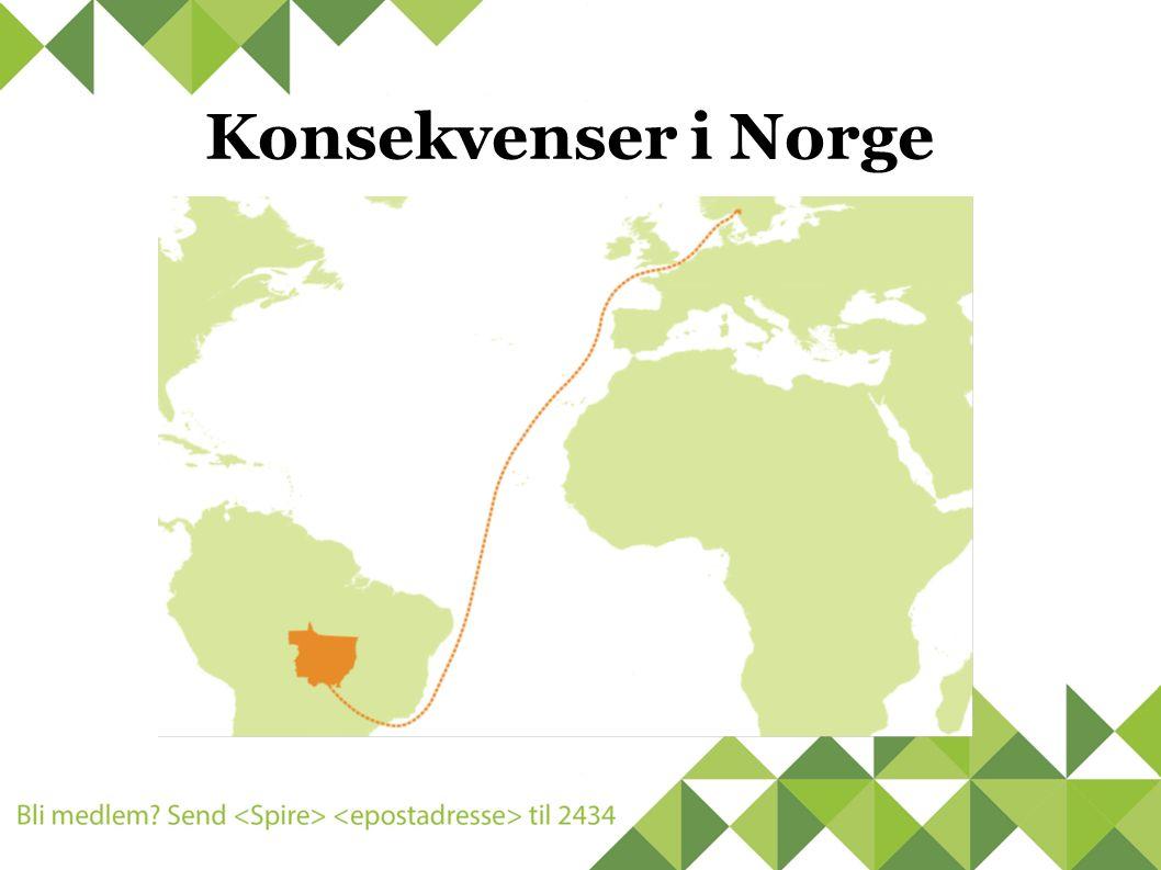 Konsekvenser i Norge
