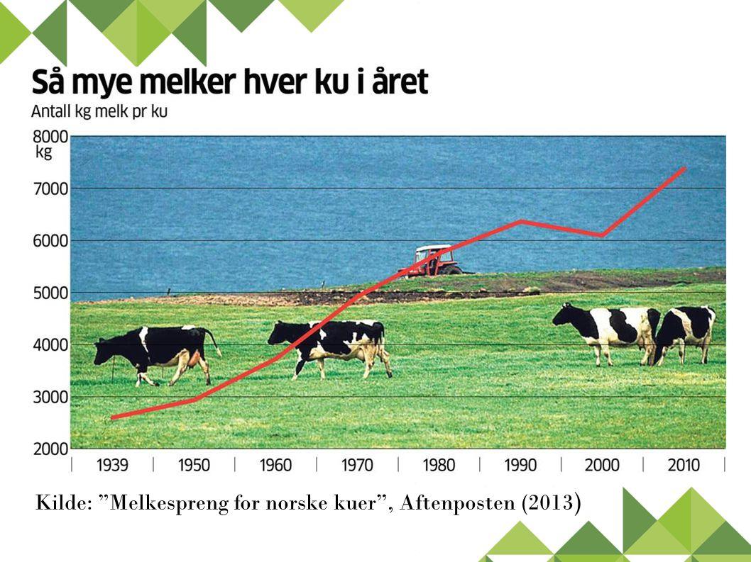 """Kilde: """"Melkespreng for norske kuer"""", Aftenposten (2013 )"""