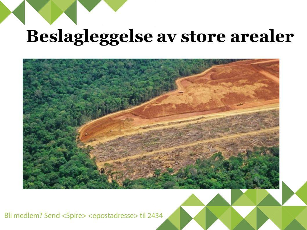 Beslagleggelse av store arealer