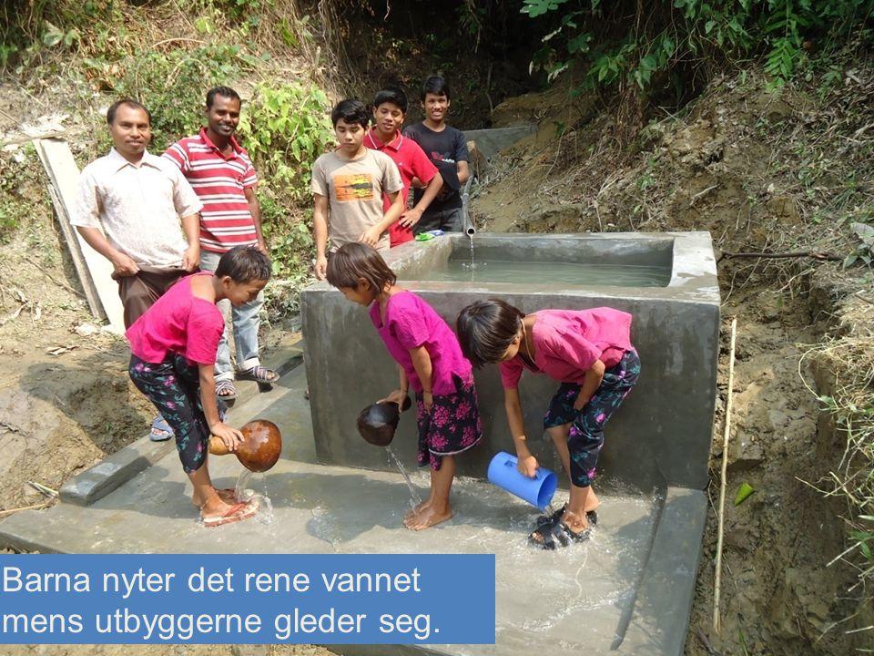 Barna nyter det rene vannet mens utbyggerne gleder seg.