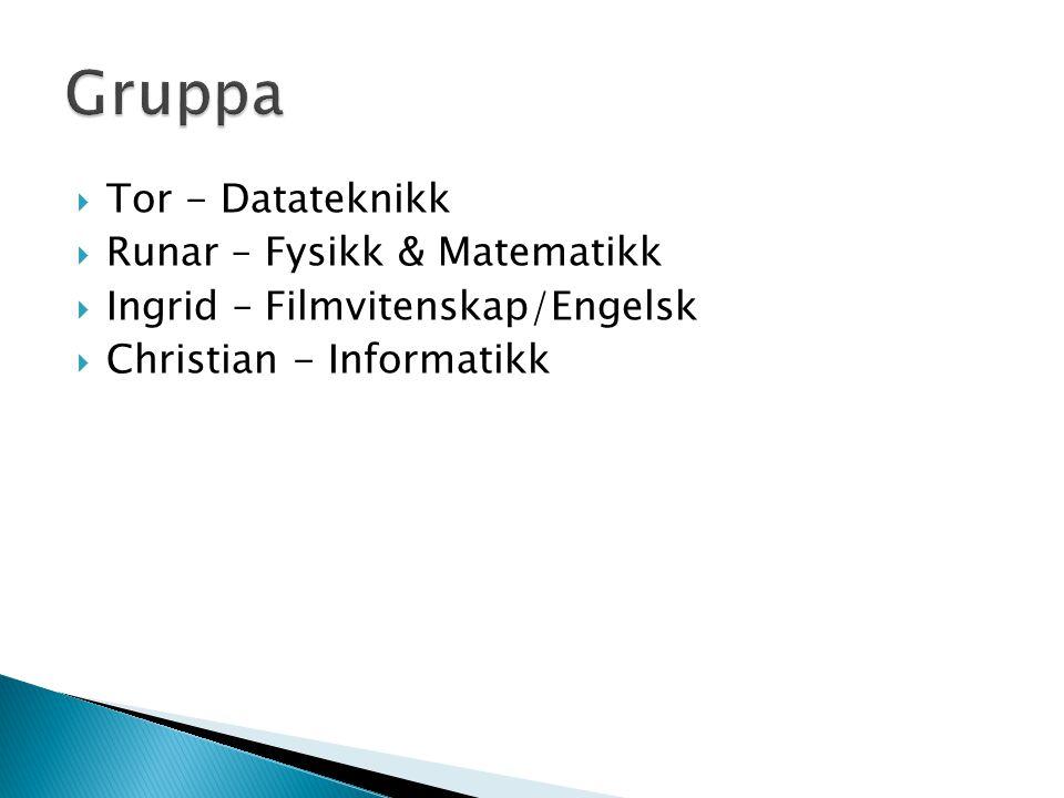  Tor - Datateknikk  Runar – Fysikk & Matematikk  Ingrid – Filmvitenskap/Engelsk  Christian - Informatikk