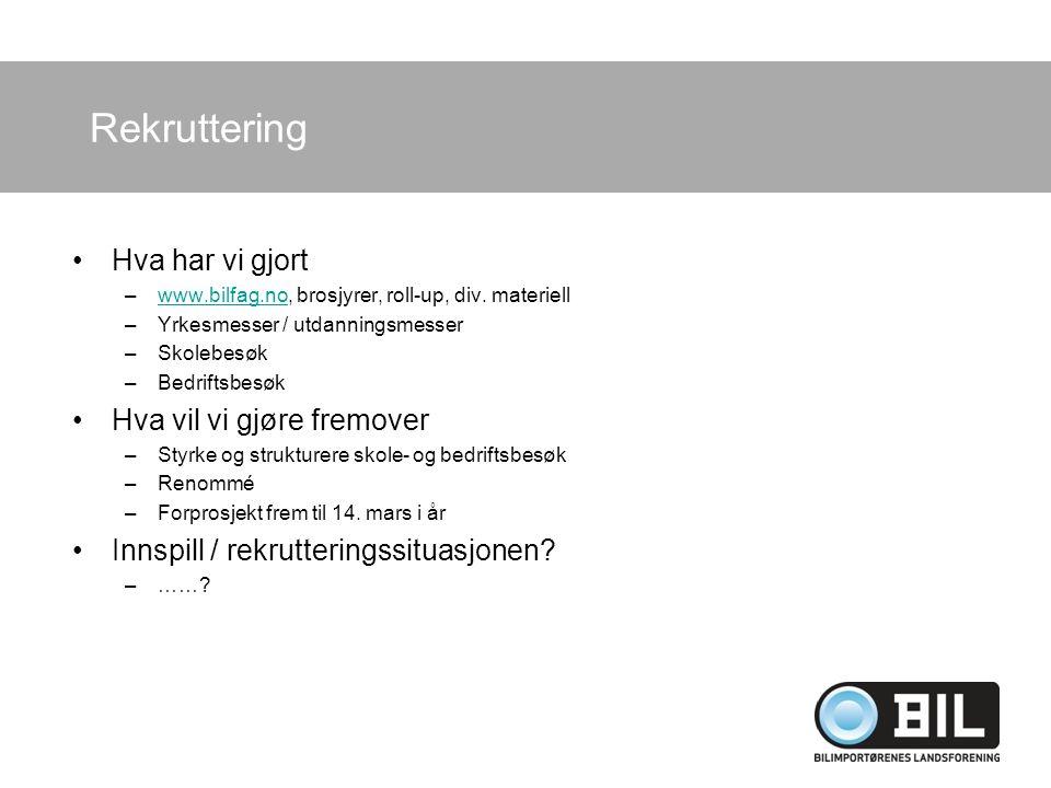 Rekruttering Hva har vi gjort –www.bilfag.no, brosjyrer, roll-up, div.