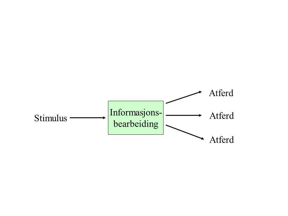 Informasjons- bearbeiding Stimulus Atferd