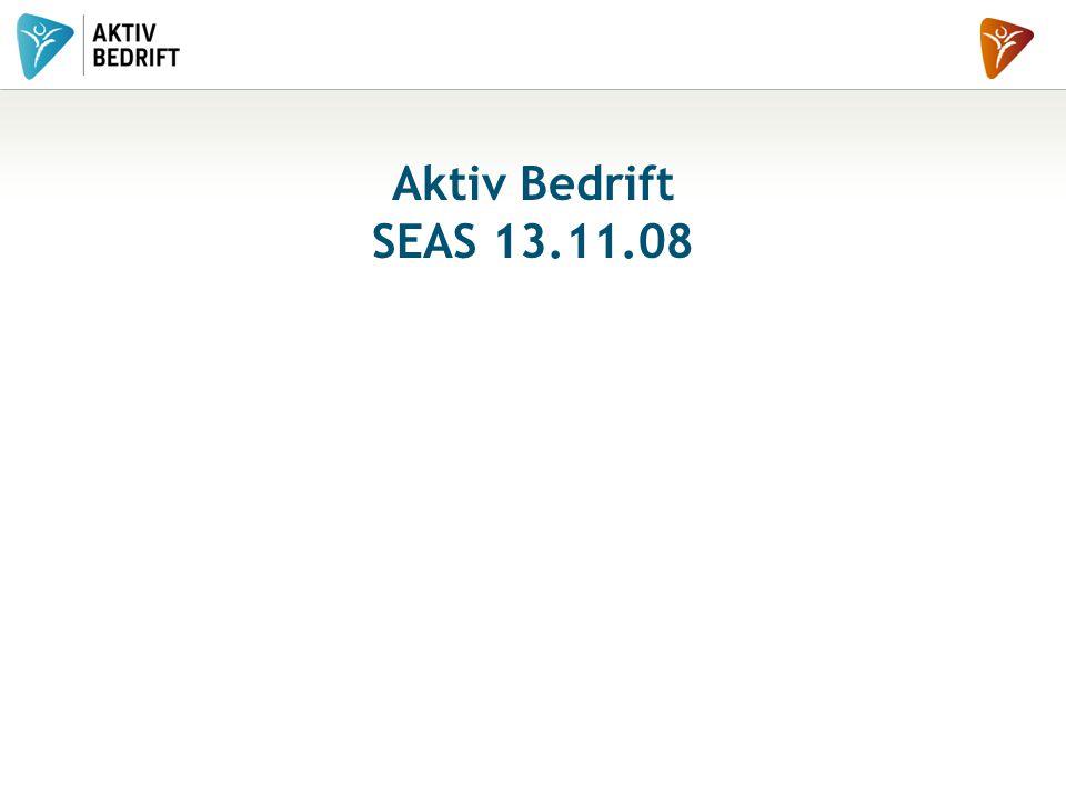 Aktiv Bedrift SEAS 13.11.08