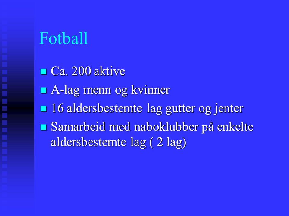 Fotball Ca. 200 aktive Ca. 200 aktive A-lag menn og kvinner A-lag menn og kvinner 16 aldersbestemte lag gutter og jenter 16 aldersbestemte lag gutter